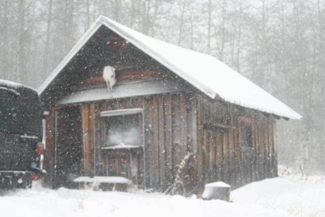 cold springs cabin